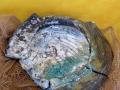 Platte aus Keramik und Glas